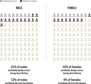 Chart showing proportion of population by sex that will develop or die from cancer